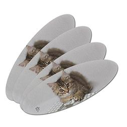 Shorthair Tabby Kitten Cat Computer Mouse Keyboard Double-Si